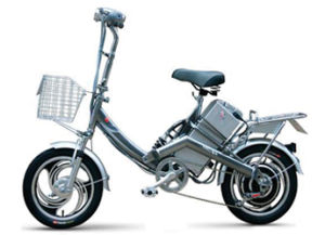Electric Scooter (FPE-010)