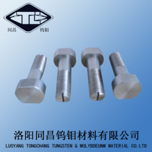 Molybdenum and Tungsten Nut/ Tungsten Screw pictures & photos