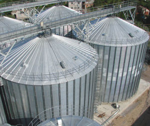 Plate Bottom Steel Silo (TC Series)