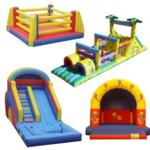 Inflatables Inflatable Castle (NC-AP1009) pictures & photos