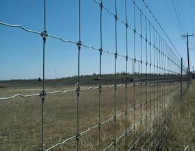 China Factory Grassland Fence with Lower Price pictures & photos