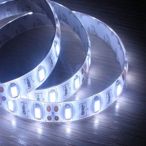 LED Strip SMD5630 Strip (LF-S04W30)