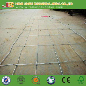 High Tensile Galvanized Hinge Joint Fence/Fixed Knot Fence/Cattle Fence/Goat Fence/Animal Fence pictures & photos