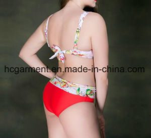 Lady′s Large Size Bikini, Plus-Size Bikini Swimming Wear pictures & photos