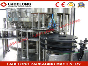 3in1 Automatic Gas Water Filling Machine/Plant/Machinery pictures & photos