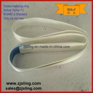 0.5t Single Endless Webbing Sling L=2m (customized) pictures & photos