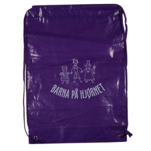 2017 New Arrive Backpack Bag for International Maratho (FLS-8237) pictures & photos