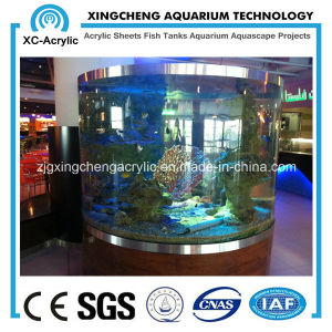 Acrylic Fish Tank/Decoration Transparent Plexiglass Aquariums pictures & photos