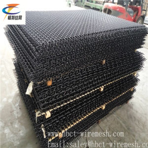 Good Price Woven Vibrating Screen Mesh pictures & photos