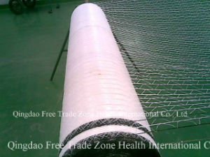 1.20 X2000m White Netting Bale pictures & photos