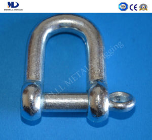 Electric Galv. European Type Dee Shackle pictures & photos