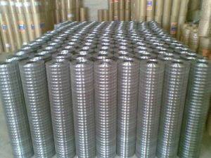 Galvanized Welded Wire Mesh/ Galvanized Square Wire Mesh pictures & photos
