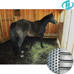 Anti-Slip Round Stud Horse/Crow Rubber Mat pictures & photos