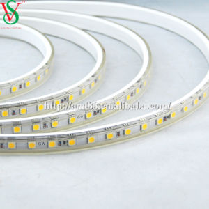 SMD5050 Red Strip Rope Light pictures & photos