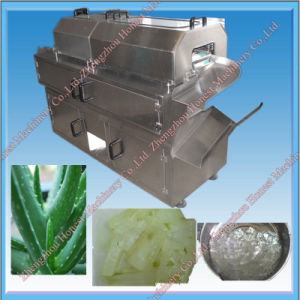 Aloe Vera Peeling Machine / Aloe Vera Processing Machine pictures & photos