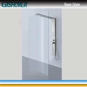Stainless Steel Shower Panel and Shower Screen Combo (LNH20-04) pictures & photos