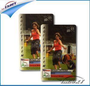 Original Classic S50/S70 IC Card pictures & photos
