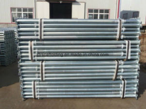 Scaffold Post Shore / Steel Shoring Prop pictures & photos
