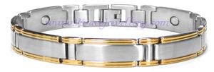 Popular Germanim Titanium Bracelet (SB-059ST)