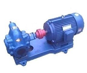 KCB300 Petroleum Product Transfer Gear Oil Pump pictures & photos