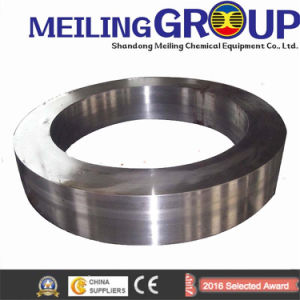 High Quality Steel Flange ANSI, DIN, GOST, JIS pictures & photos