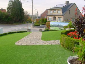 Artificial Grass for Back Yard (LTHBS25SL4)