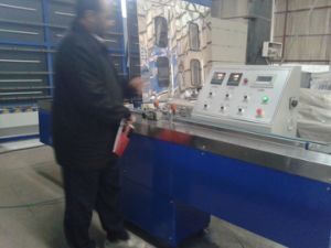 Butyl Extruder Machine pictures & photos