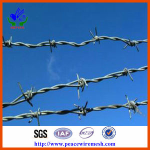 Chain Link Fencing Top Barbed Wire Barbed Wire Mesh pictures & photos