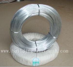 Electro Galvanized Iron Wire Galvanized Iron Wire pictures & photos