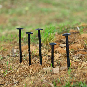 Plastic Nail for Fixing Ground Cover pictures & photos