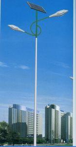 High Quality 6m Solar Street Light