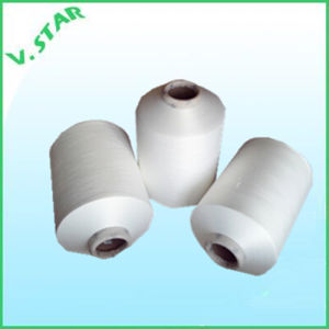 100d/48f/1 S+Z Nylon 6 Texture Yarn pictures & photos