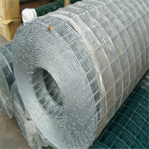 Green PVC Steel Welding Wire Mesh pictures & photos