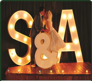 LED-Letter-Lamp LED Letter Bulb Signs for Wedding Festiva Holiday pictures & photos