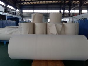 Aramid Dust Filter Cloth pictures & photos