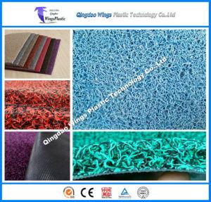 Ws Double Colors PVC Car Coil Mat / PVC Carpet pictures & photos
