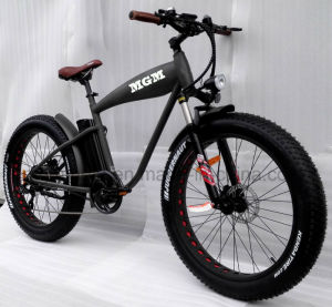 26*4.0 Fat Tire Big Power Mountain Bike pictures & photos
