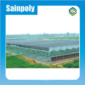 Sainpoly High Standard Transmissivity Agriculture Glass Greenhouse pictures & photos