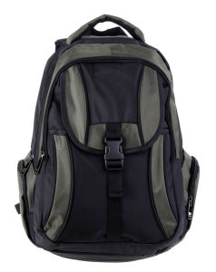 Nice Price Backpacker Laptop Bag Backpack (SB2115) pictures & photos