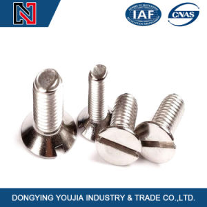 Hot New Product Stainless Steel Slotted Countersunk Head Screw pictures & photos
