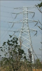 High Quality Transmission Tower in China pictures & photos