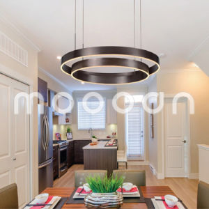 Modern Dark Brown Round Ring Aluminium Pendant Light for Living Room
