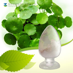 Gotu Kola Extract Natural Madecassoside, Asiaticoside, Asiatic Acid pictures & photos
