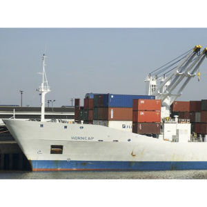 Shipping Service: China to Latin America pictures & photos