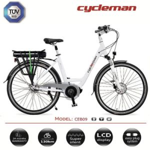 Top Quality Crank Motor Electric Bicycle