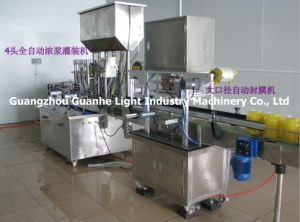 Automatic Film Hot Sealing Machine for Various Bottles or Cans pictures & photos