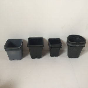 Special Shape Square Plastic Pot Thermoforming Machine pictures & photos