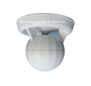 Pendent Speaker Good for High-Class Hotels and Shops