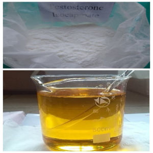 Muscle Building 15262-86-9 Steroid Hormone Testosterone Isocaproate (Sh-Ts006) pictures & photos