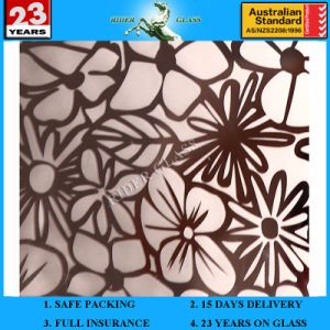 3-6mm Am-78 Decorative Acid Etched Frosted Art Architectural Mirror pictures & photos